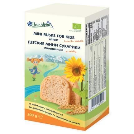 Сухарики детские Fleur Alpine Органик пшеничные мини, с 3-х лет, 100 г