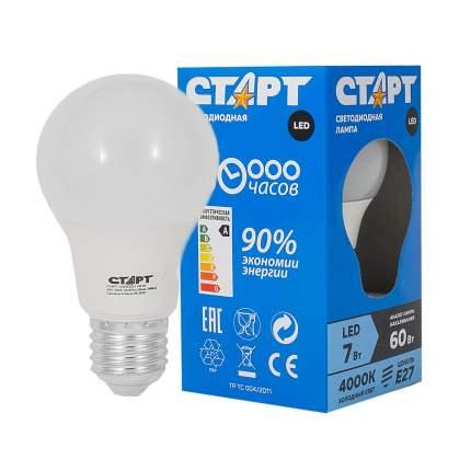 Светодиодная лампа Старт LED 7W E27 холодный шар