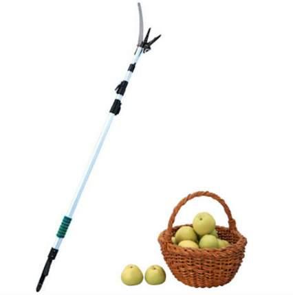 Телескопический плодосборник приспособление для сбора яблок и плодов с деревьев 3 метра