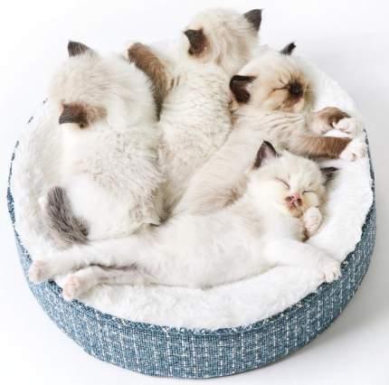 Лежанка для кошки Petkit Deep Seep Cat Bed P7107, полиэстер, пенополиуретан, 50x50x10см