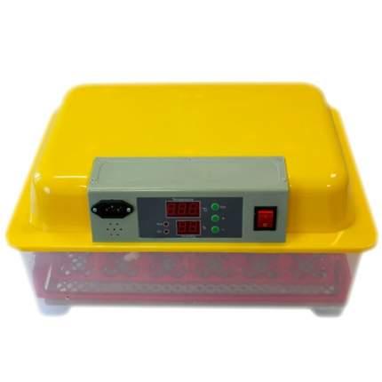 Инкубатор автоматический WQ на 24 яйца