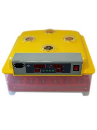 Инкубатор автоматический WQ-36 на 36 яиц