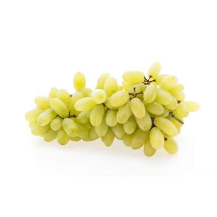 Виноград белый Дамские пальчики