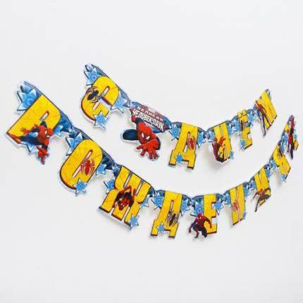 Гирлянда на люверсах Marvel С Днем рождения! Человек-паук