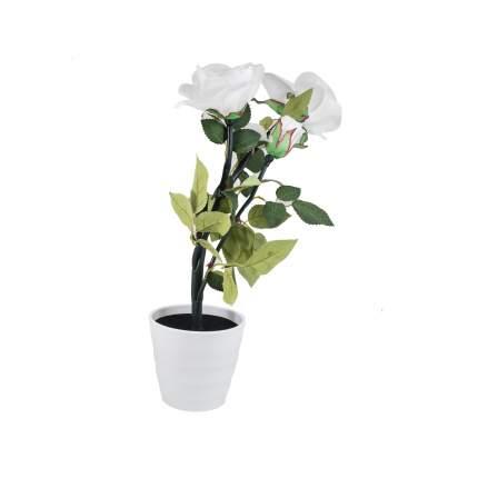 Ночник СТАРТ 9444 LED роза3 белый