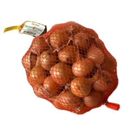 Лук-севок Штуттгартер ризен 21/24 (сетка 1 кг)