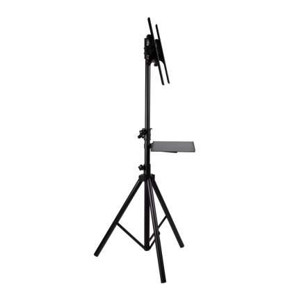 Телескопическая стойка-тренога для LED/LCD/PLASMA телевизоров ARM MEDIA TR-STAND-2