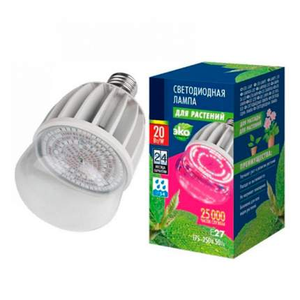 Лампа светодиодная для растений Uniel LED-M80-20W (форма М) 20 Вт