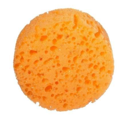 Губка баннаяРадиус Люкс  круглая оранжевая 2 шт
