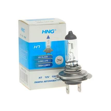 Лампа 12V H7 100W PX26d увеличенный срок службы Long Life HNG
