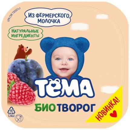 Биотворог Тема с 6 месяцев слива, малина 4.2% 100 г