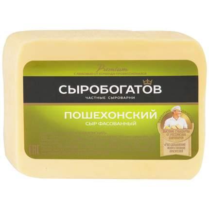 Сыр пошехонский 45-50%