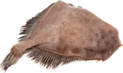 Камбала потрошеная без головы свежемороженая ~1 кг