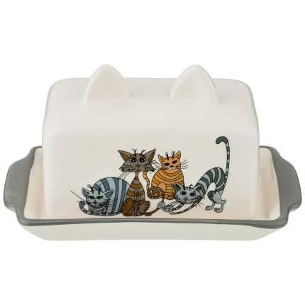 """Масленка """"Озорные коты"""" 18x11x9 см. Lefard_188-206"""