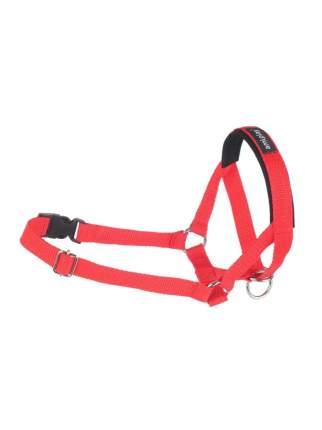 Недоуздок AmiPlay Basic N2 Фокстерьер 13-26x25-41x2 см, красный