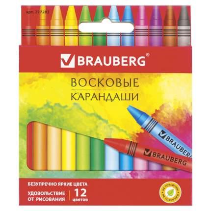 """Восковые карандаши BRAUBERG """"АКАДЕМИЯ"""" 12 цветов 227283"""