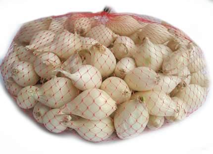 Лук-севок Альбион F1 1 кг