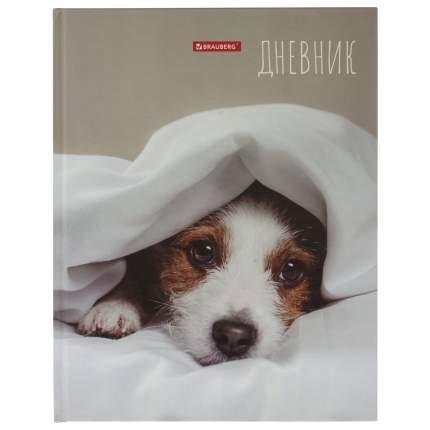"Дневник 1-11 класс 40 л, твердый, BRAUBERG, глянцевая ламинация, ""Милый щенок"", 105545"