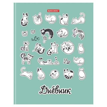 Дневник школьный 5-11 класс Brauberg Котики 48л, твердый переплет