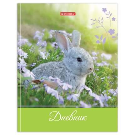 Дневник школьный 5-11 класс Brauberg Милый кролик 48л, твердый переплет