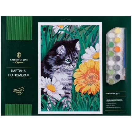 Картина по номерам Greenwich Line Котик в цветах A3, с акриловыми красками КК_27761