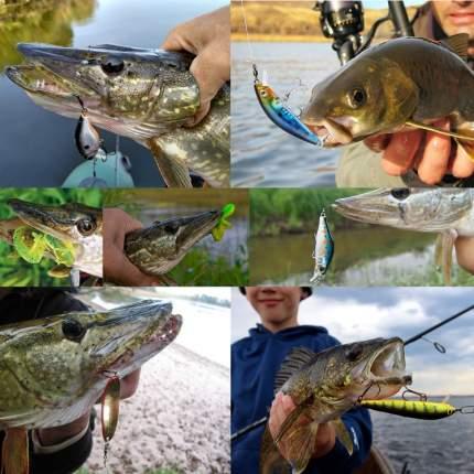 Набор для рыбалки, 234 в 1, цвета микс, 20х10х4,5 cм, Рыбиста RB-SET-10