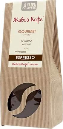 Кофе Живой Кофе Espresso Gourmet молотый 200 г
