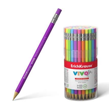 Карандаш механический ErichKrause® Vivo® 0.5 мм НВ в тубусе 60 шт