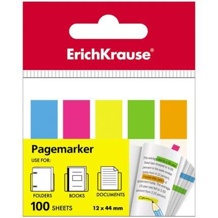 Закладки пластиковые с клеевым краем ErichKrause Neon, 12х44 мм, 100 листов, 5 цветов
