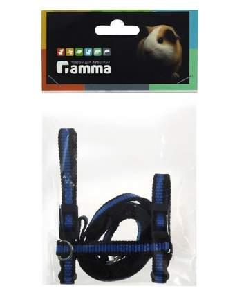 Шлейка для морских свинок Gamma капрон, синий, 1x120см