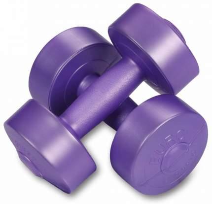 Гантели виниловые 2 х 1,5кг, фиолетовый