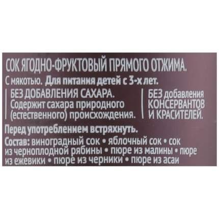 Сок рич 100% ягодно-фруктовый п/б 0,3л