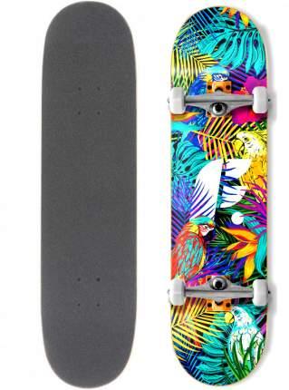 "Скейтборд Footwork Tropical 31.5X8"" (81 X 21 см)"