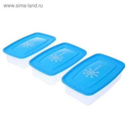 """Набор контейнеров """"Морозко"""" для заморозки, 0,7 л,  3 шт, 18,5 x 12 x 8,5 см"""