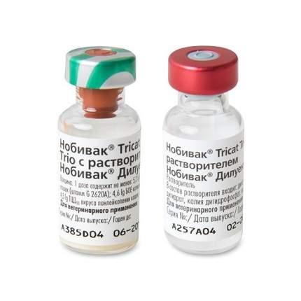 Вакцина для кошек INTERVET Нобивак Tricat Trio, 1 доза с растворителем