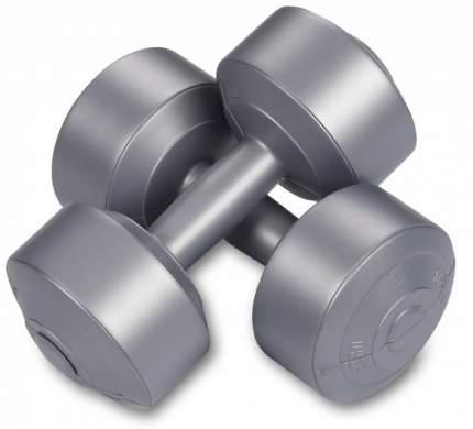 Гантели виниловые 2 х 4кг, серебро