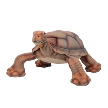 Галапагосская черепаха Hasnsa 70 см