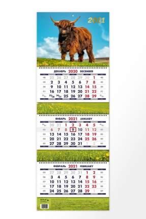 Календарь ND Play на 2021 год. Символ года дизайн 2 (квартальный)