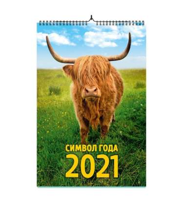 Календарь ND Play на 2021 год. Символ года дизайн 1 (настенный, на спирале)