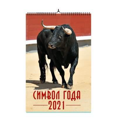 Календарь ND Play на 2021 год. Символ года дизайн 2 (настенный, на спирале)