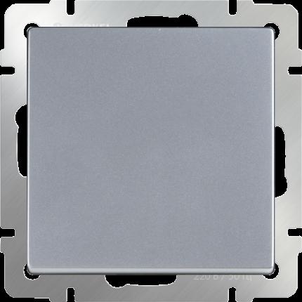 Вывод кабеля серебряный WL06-16-01