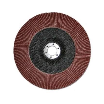 Диск лепестковый для угловых шлифмашин БАЗ 36563-125-60
