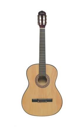 Классическая гитара 4/4 TERRIS TC-3901 A NA