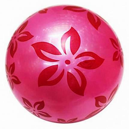 Мяч Next Цветы, 22 см