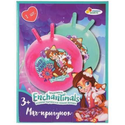 Мяч Играем Вместе Enchantimals, 55 см