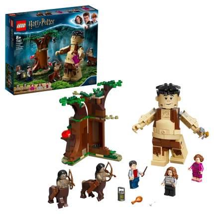Конструктор LEGO Harry Potter 75967 Запретный лес: Грохх и Долорес Амбридж