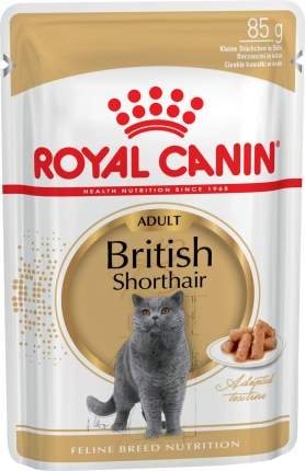 Влажный корм для кошек ROYAL CANIN British Shorthair Adult, британская, соус, 12шт по 85г