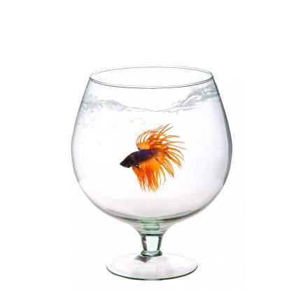 Аквариум для рыб AquaPlus Бокал, прозрачный, 1,8 л