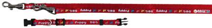 Комплект поводок+ошейник для щенков TRIXIE Puppy Collar with Leash, красный, 13мм х 2м