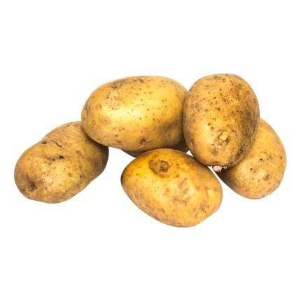 Картофель  ~5 кг